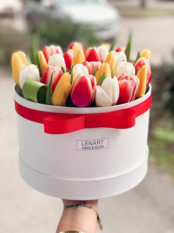 Tulipán box 30 szál