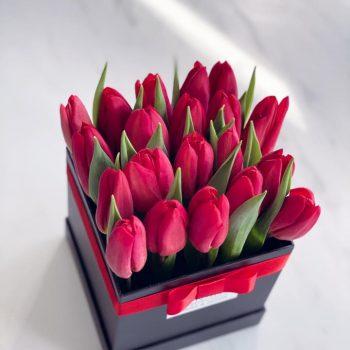 Tulipan box